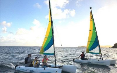 IC-24 & Hobie Wave Racing